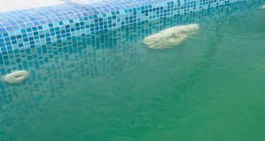 Вода в бассейне мутная